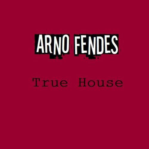 Arno Fendes - True House (original mix)