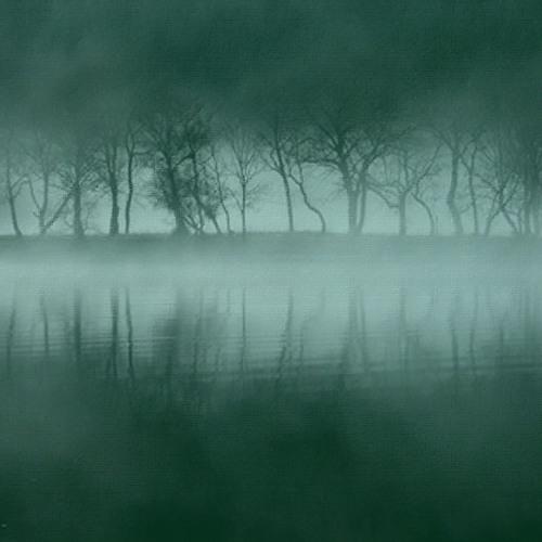 The Misty Place