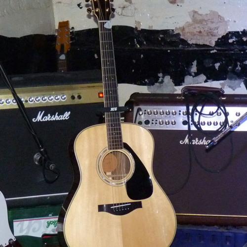 Acoustic Punk