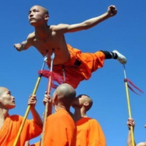 """""""Shaolin Style"""""""