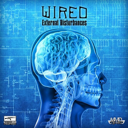 Wired Feat Eyetek - External Disturbances