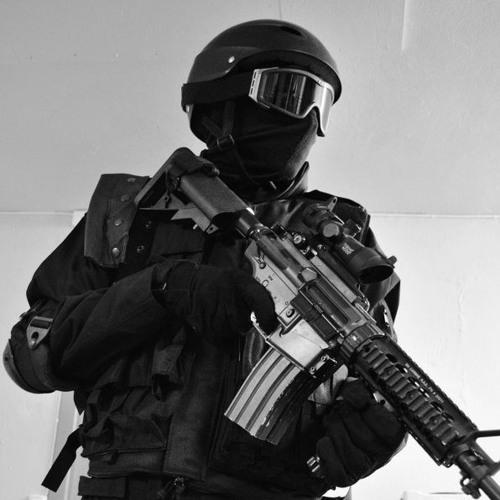 David Meiser - Assault Forces