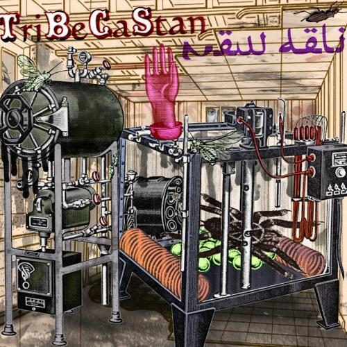 Interview: TriBeCaStan