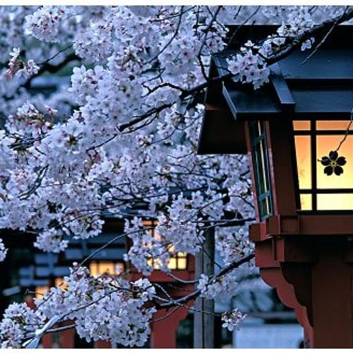 桜の葉。アキの回想録 - DIKA SAN