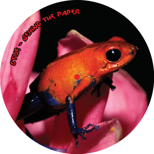 Stije - Behind the Paper (Origami Records Treefrog E.P)