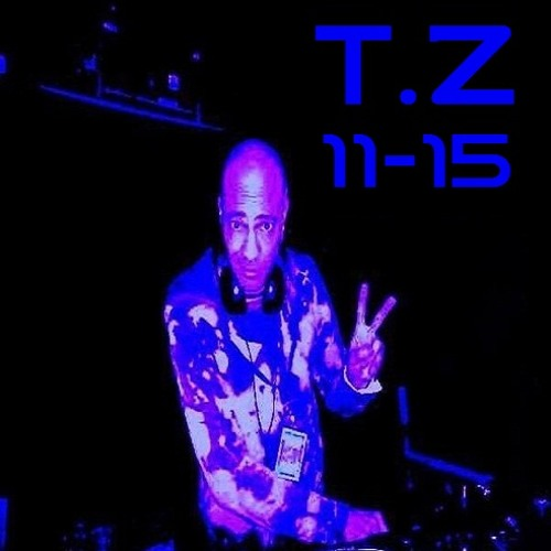 THE T.Z MASH UP MIX (11-15)