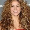 Shakira - Loba Live