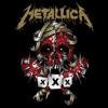 Metallica - Through The Never [The Fillmore, December 10th 2011]