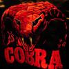 Teddybears - Cobrastyle ( NatHasA remix )