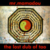 the lost DUB of TAO by MrMamadou the PiArt