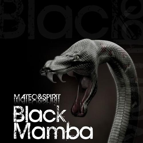 Mateo & Spirit - Black Mamba