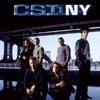 The Who - Baba O'Riley (Arygo's CSI NY tribute)