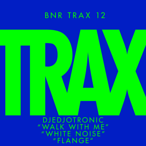 DJEDJOTRONIC BNR TRAX #12 Preview
