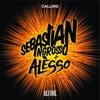 Sebastian Ingrosso & Alesso vs. Journey - Don't stop calling (Trani's booty)