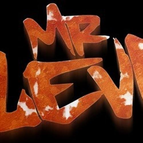 Mr.Levi - Gyal Skank