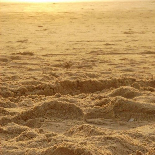 Sands of goa