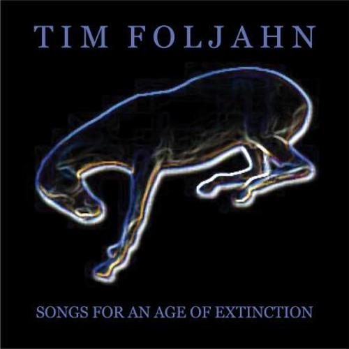 Tim Foljahn - New Light