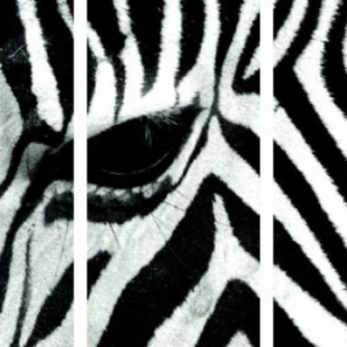 TicK - Das Zebra im Wohnzimmer - (Home Master II)