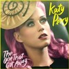 Katty Perry THe One that Got Away Bruce Wane Remix