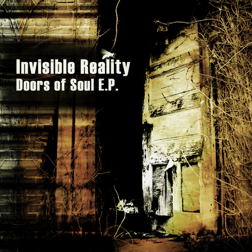 Invisible Reality VS Static Movement-Cybernetic Evolution (2012)