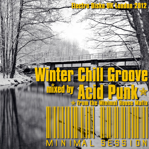 Acid Punk live from Winter Beatz 2012