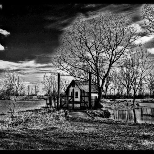 Noahs Boat - Das Haus