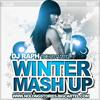 DJ Raph - The 2011 & 2012 Winter Mashup