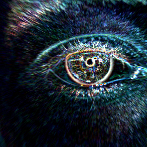 J. Schu - Hendrix Vibration Creation