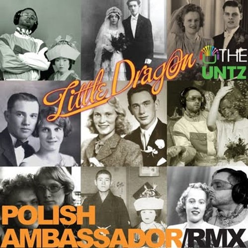 Little Dragon - Ritual Union (Polish Ambassador Remix)