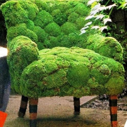 Chair Moss