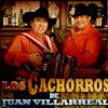 Los Cachorros de Juan Villarreal corridos mix
