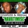 Qounfuzed & Freeman - Havatimise mp3