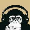 Funky Music (Funk remix by Bernat R.)