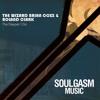The Wizard Brian Coxx and Roland Clark - The Deeper I Go (Mr. V Remix)