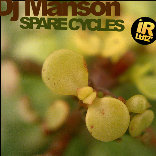 Spare Cycles - Dj Manson [2001]