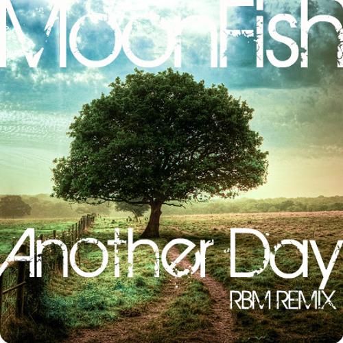 MoonFish - Another Day (DJ RBM Remix)