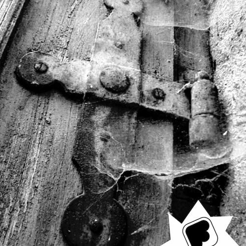 Fran Bortolossi - Raw Door [Elements Digital] out