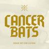 Cancer Bats -