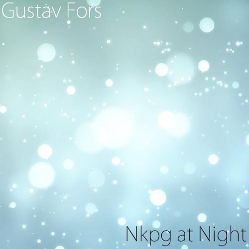 Gustav Fors - Nkpg at Night