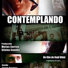CONTEMPLANDO (2011)