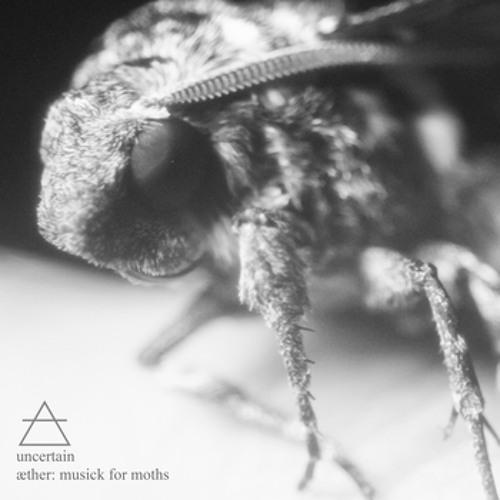 uncertain - nocturnal flight (DIL23 into the storm remix)