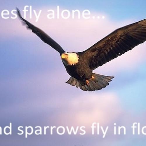 Flyalone