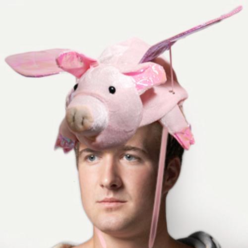 Pat The Pig