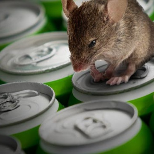 Mountain Dew can dissolve a mouse, says PepsiCo lawyers