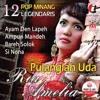 Ria Amelia - Pulanglah Uda ( FLash Mix ) mp3