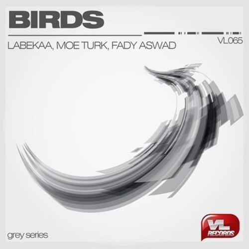 Labekaa, Moe Turk & Fady Aswad - Birds (Audible Astronaut Remix)
