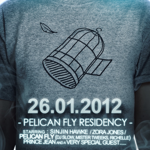 Dj Slow - Pelican Fly Party #1 Promo Mix