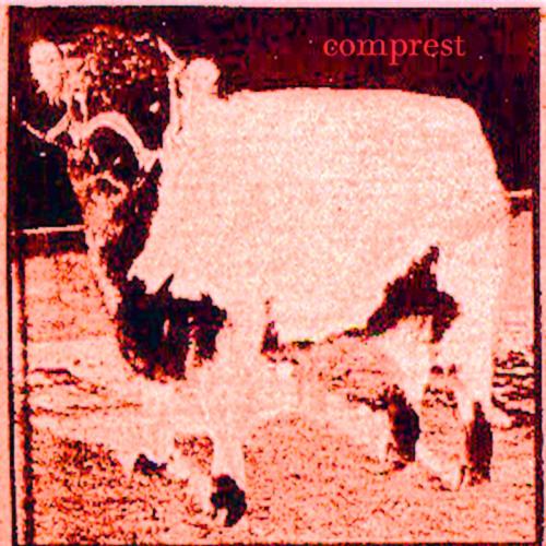 nattymari - comprest