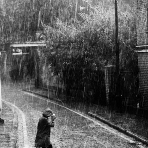 Fad - Rainy Season