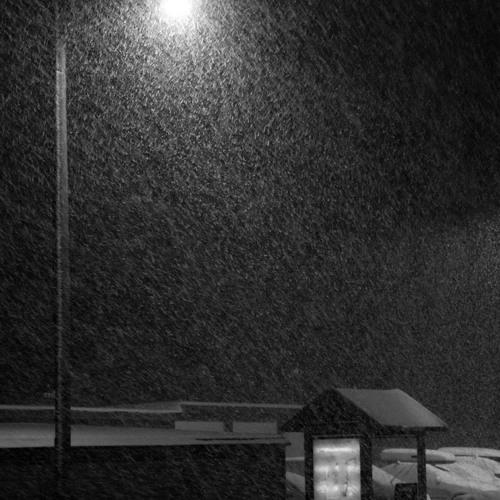 Echo Kid - Gone In Snow